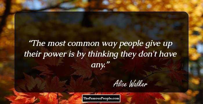 Alice Walker's bigotry