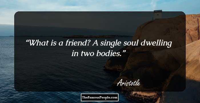 Friendship is a single soul dwelling in two bodies essays