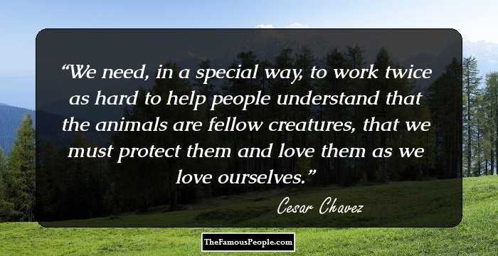156 Thought Provoking Quotes By Cesar Chavez That Prove Nothing Is