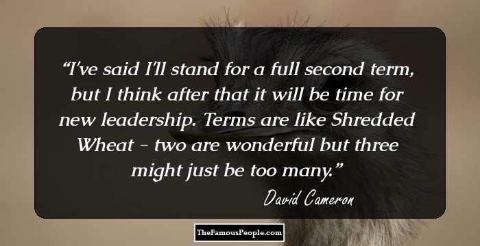 david-cameron-102710.jpg