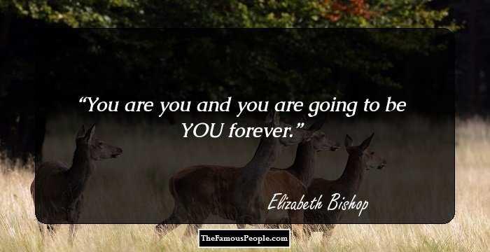 Elizabeth bishop famous quotes