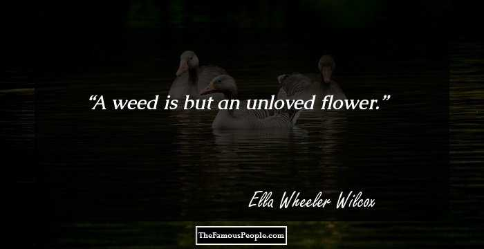 ella-wheeler-wilcox-17121.jpg