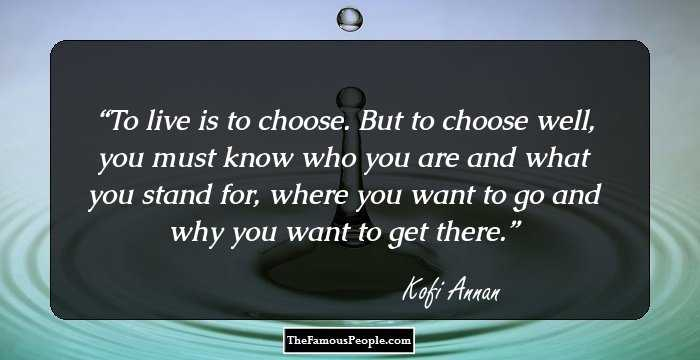 Quote About Peace And Love Classy 44 Thoughtprovoking Kofi Annan Quotes On Peace Love And Harmony