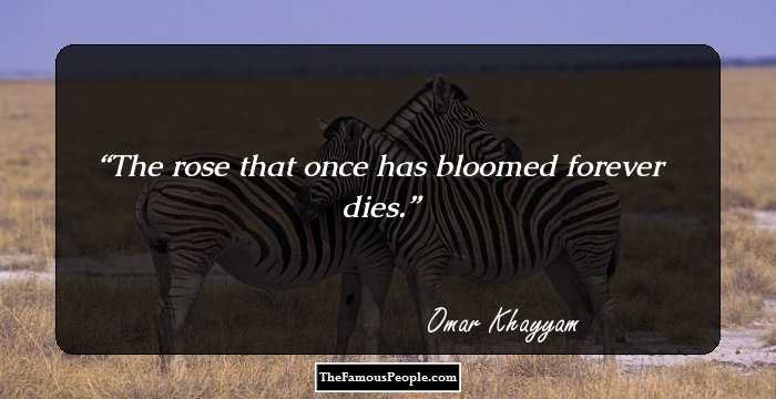 74 Famous Quotes By Omar Khayyam The Man Who Donned