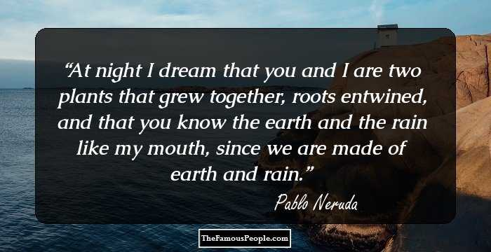 pablo neruda the dream There is a certain tension in this poem 'dream horse' - between 'the extensive country in the sky' and 'the brooms and documents.
