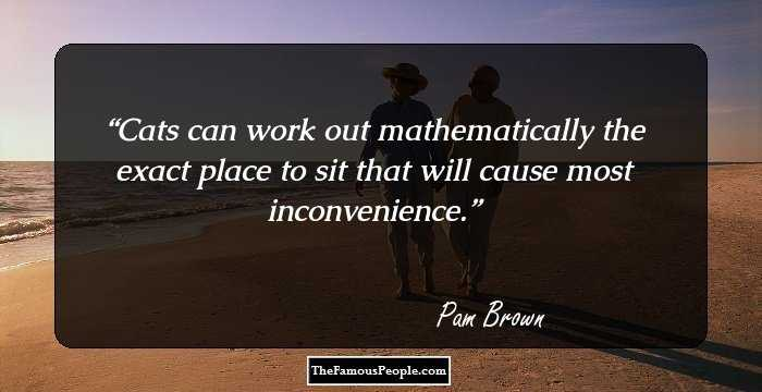 28 Mind-Blowing Quotes By Pam Brown That Prove Little Things ...