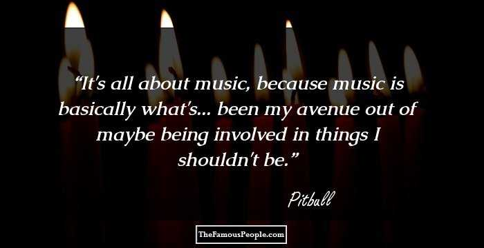 26 Great Quotes By Pitbull That Will Impel You To Turn Up ...