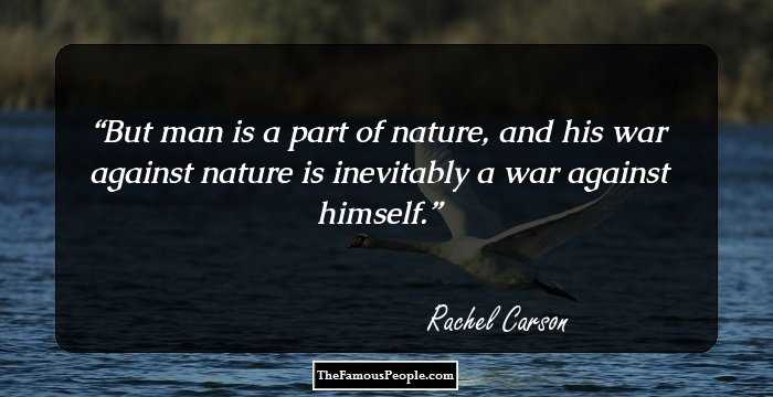 60 Inspiring Quotes By Rachel Carson That Will Nurture Your Love For Custom Rachel Carson Quotes