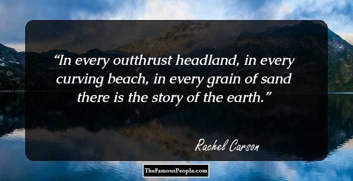 60 Inspiring Quotes By Rachel Carson That Will Nurture Your Love For Mesmerizing Rachel Carson Quotes