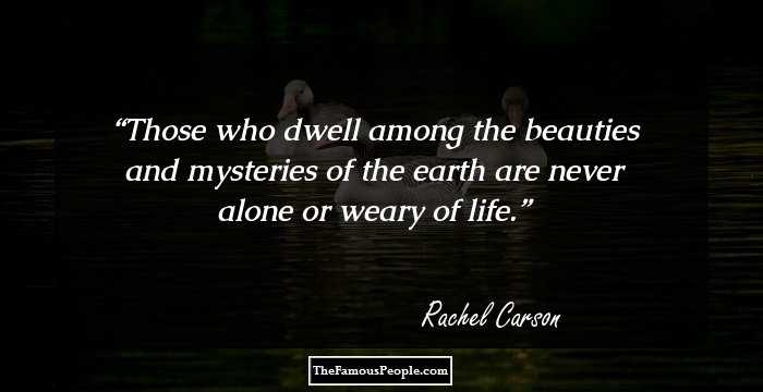 27 Inspiring Quotes By Rachel Carson That Will Nurture Your Love For