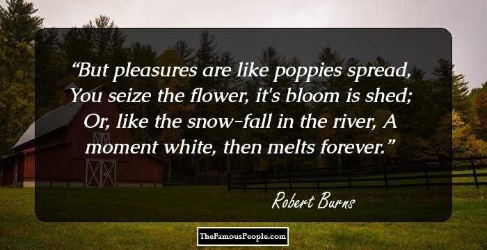46 Great Quotes By Robert Burns Pioneer Of Romantic Movement