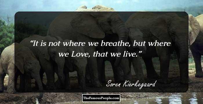 Soren Kierkegaard Quote There Is Something Almost Cruel: 114 Insightful Quotes By Soren Kierkegaard On Fear, Regret