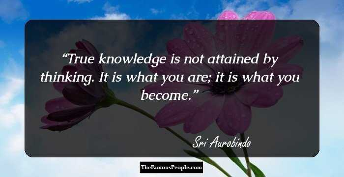 87 Thought Provoking Quotes By Sri Aurobindo That Will Change The
