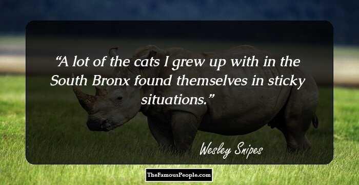wesley-snipes-141284.jpg